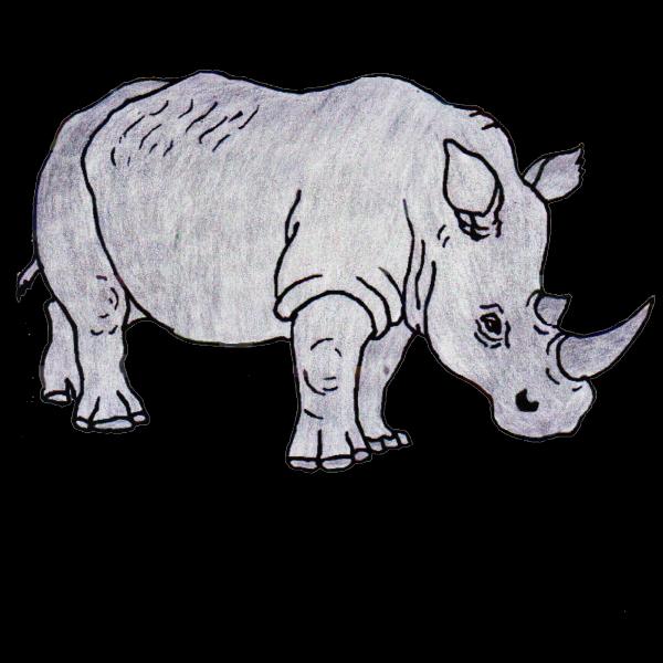 Coloriage rhinoc ros - Rhinoceros dessin ...